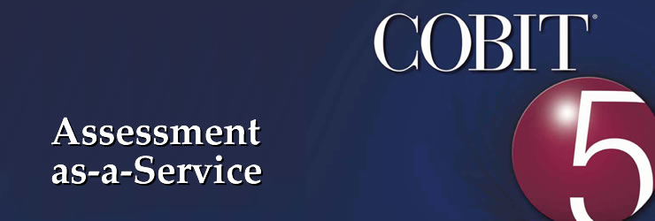 COBIT assessment-as-a-service